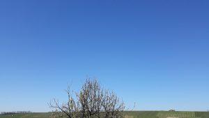 Himmel ohne Chemtrails